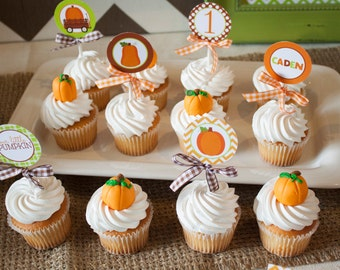 12 Chubby Little Pumpkin Fondant  Toppers for Cupcakes or Cake!