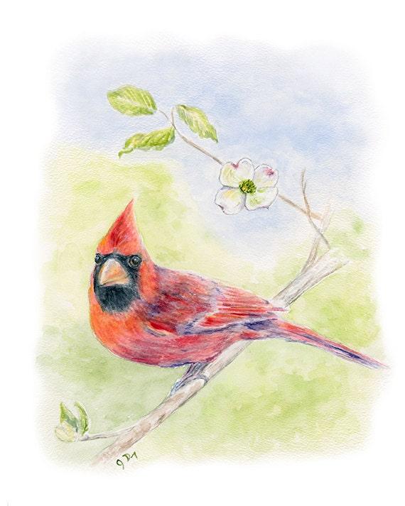 Items Similar To Cardinal Bird Original Watercolor