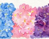 Hydrangeas watercolor painting original, pink hydrangeas, blue hydrangeas and purple hydrangeas,  floral artwork