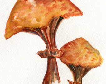 Portobello Mushrooms Watercolors Paintings Original 5 X7 Mushroom Art Original Watercolor Painting Of Portobello Mushrooms