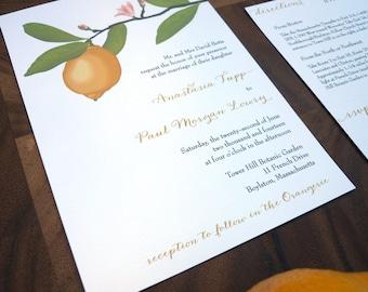 Anastasia lemon branch illustration wedding invitation suite - Deposit