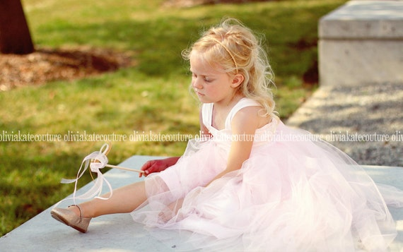 Flower Girls Dress Pale Pink