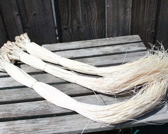 Huge bundle of niau blanc- 400 strands- 20 bundles-LOWER PRICE, Tahitian Costume. Polynesian weaving