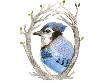 Blue Jay Portrait - Archival Print of original watercolor - nursery art, bird lover