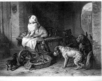 DOGS EDWIN LANDSEER Beautiful Anthropomorphic Scene & Very Detailed ~ Steel Plate Engraving Antique Vintage Print   1800s