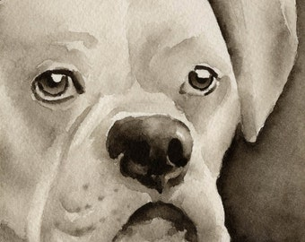 WHITE BOXER Sepia Art Print Signed by Watercolor Artist DJ Rogers