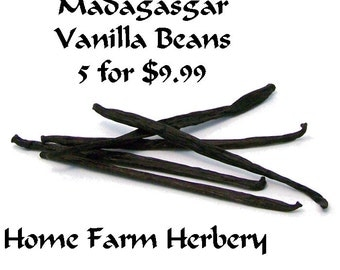 Madagascar Vanilla Beans just for the Gourmet Cook or Baker