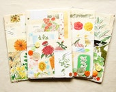 Vintage Garden and Flowers Paper Scrap Pack