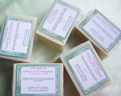 5 Soap Package Deal with Free Soapdish