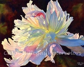 White Peony watercolor painting print, 16 x 22, by Cathy Hillegas, watercolor peony, watercolor print, white, pink, yellow, blue, purple