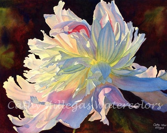 White Peony watercolor painting print, 16 x 22, by Cathy Hillegas, watercolor peony, floral watercolor print, pink blue art, gifts for mom