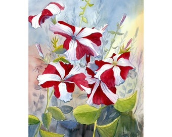 Red Petunia PRINT watercolor Painting  Landscape Floral flowers flower   11x14 Giclee Reproduction VARIOUS SIZES