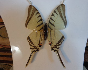 REAL Butterfly Wing Sterling Necklace THICK & SOLID