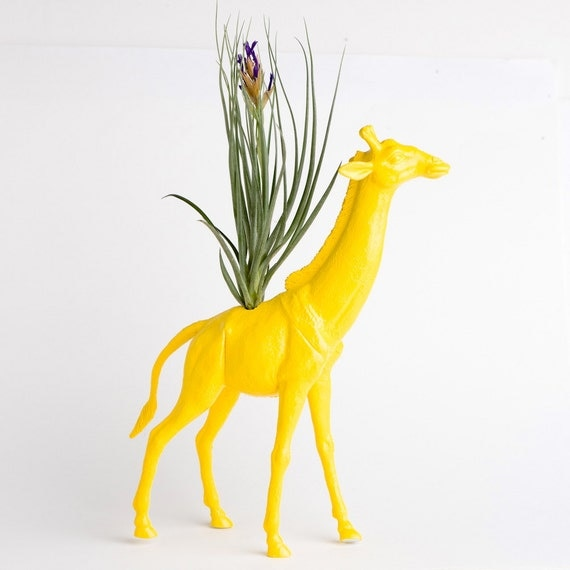 Giraffe Planter, Air Plant Room Decor, College Dorm Ornament, Plants and Edibles, Yellow Plant Pot