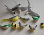 Vintage tiny birds set of eleven
