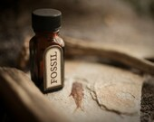 Fossil - natural perfume oil - scent of hot limestone, dry minerals and seashells, petrified wood, and fossilized amber - For Strange Women