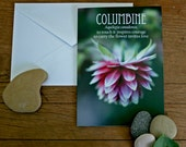 columbine photo note card flower folklore // Nature Floral Plant Life Botanical // Prairie Garden