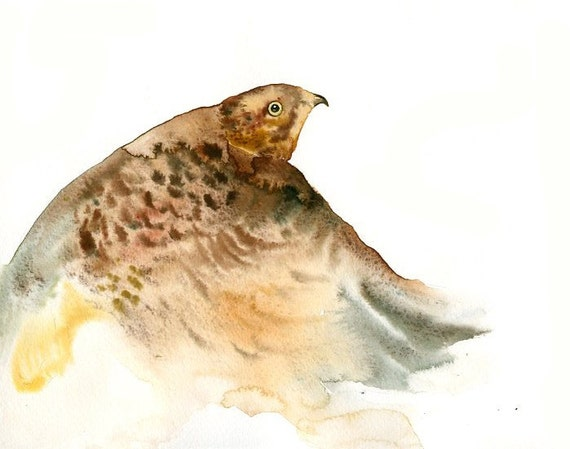 Hawk painting watercolor - photo#8