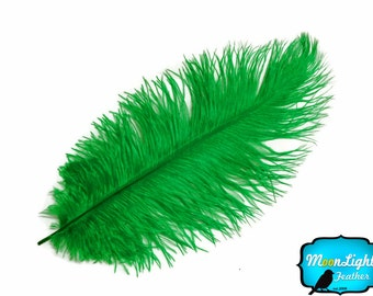 "Ostrich Feathers, 10 Pieces - 11-13"" KELLY GREEN Ostrich Dyed Drabs Body Feathers : 2146"