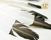 """6pcs """"Eagle"""" Turkey Wing Feathers both Right and Left wing, BLACK DIPPED - premium crafts and millinery supply"""