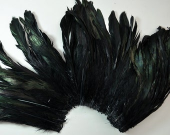 25-30pcs Rooster Tail Satinette Feathers-Black with Iridescent Green