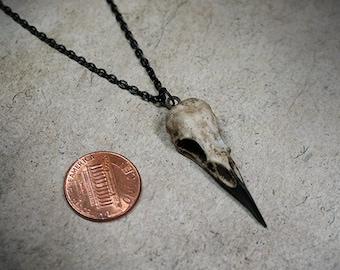 "Super-Mini Raven Skull Necklace (1.5"" Tiny) Resin Cast Skull - Gothic Gift Spooky Bird Skull Jewelry"