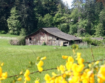 Rustic Anacortes Barn Digital Download Photo