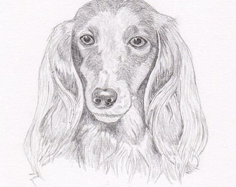 Long Hair Dachshund Signed Personalized Original Pencil Drawing Double Matted Print -Free Shipping- Desert Impressions