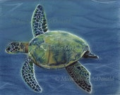 Sea Turtle Painting - sea turtle art, sea turtle print, nautical decor, wildlife art, ocean art, underwater painting,