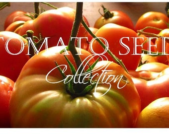 Tomato, Heirloom Tomato Seed Collection | Rare, Unusual and Tasty (11 packets)!