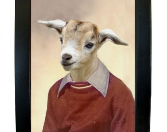"Billy the Goat, School Portrait -  Framed Print 6"" X 7.75"""