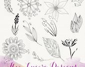 PNG botanical doodle clip art, overlays, digital embellishments