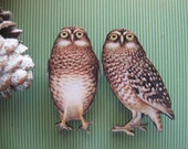 LoVe BiRdS. Woodland Owl wood brooch set