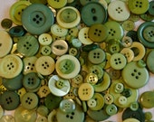 50 Green Button Mix, KIWI Blend Assorted Buttons, Sewing Crafting Jewelry Collect (1600)