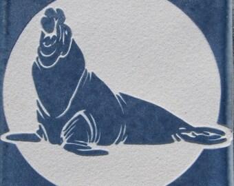 4x4 Elephant Seal - Etched Porcelain Tile - SRA