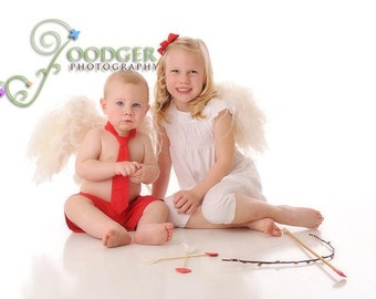Instant Download DIY Easy Beginner Tutorial - How to make Angel Wings ..Great for  Valentine's Day Props - February's Child