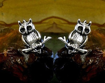 Owls Stud Earrings Sterling Silver Free Domestic Shipping