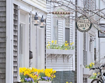 Bakery Photography, Nantucket Photography, Fine Art Photography, Kitchen Art, Home Decor, Daffodils, Springtime, Yellow Decor, Summer Home
