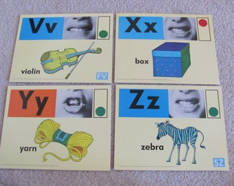 Large Phonics Flash Card - Circa 1972 Yarn Violin Box Zebra