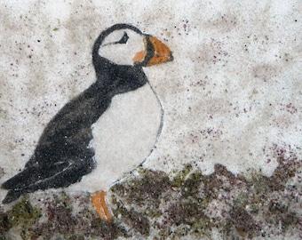 In the Grass Puffin sand painting 5x7 bird painting Atlantic puffins seabirds Maine seascape bird art original art work