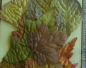 Clearance 16 Colorful Floral Leaf Embellisments