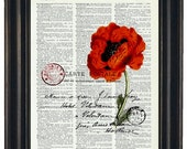 Red-Orange Flower and Post Card French Upcycled Art Print on Vintage Dictionary Book Page