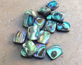 Abalone Beads, rectangle, 18 loose beads, 10 x 8 mm