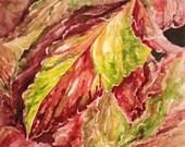 Original Watercolor Coleus Leaves Painting Art   11 X 14