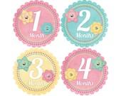 Baby Stickers Monthly, Girls Baby Bodysuit Stickers, Monthly Stickers, Baby Month Stickers, Monthly Bodysuit Stickers, Pastel Flowers (G078)