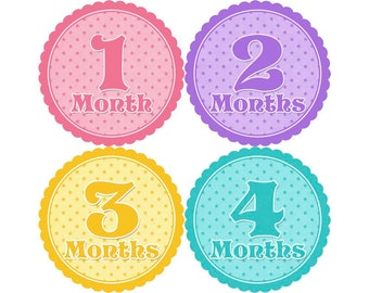 Baby Month Stickers, Monthly Baby Stickers, Monthly Photo Stickers, Girls First Year Photo Props, Baby Shower Gift, Pastel (G014)