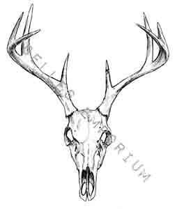 skull temporary tattoo deer head temporary by joellesemporium. Black Bedroom Furniture Sets. Home Design Ideas