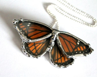 Real Butterfly Necklace - Viceroy Butterfly on Sterling Silver Chain