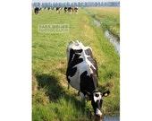 Photograph of Dutch cow drinking in a meadow. animal farm, green, dutch, holland, cows, field, creek