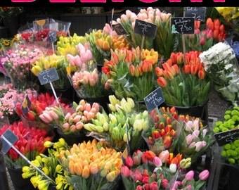Magazine Bag Duct Tape ANA DELIGHT Paris Flower Market